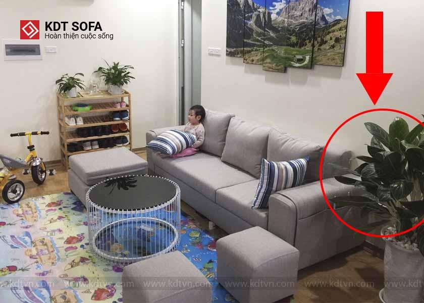 ghế sofa bền lâu đúng cách
