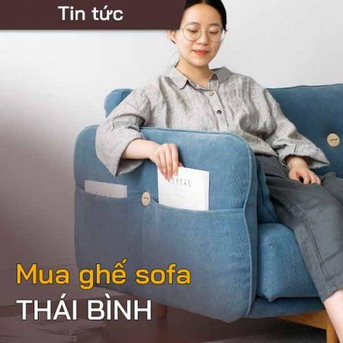 Địa điểm bán ghế sofa Thái Bình tốt nhất – đóng tại xưởng