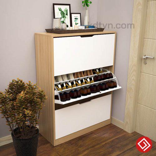 Tủ giày thông minh giá rẻ TG02