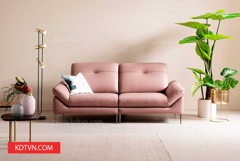 Sofa văng 2 chỗ ngồi